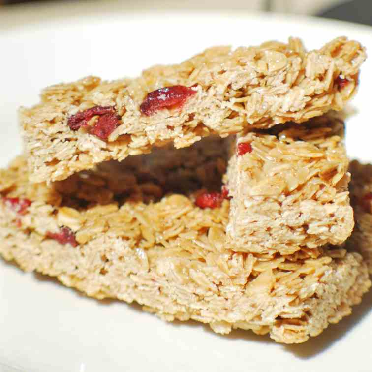 cranberry oat breakfast bars