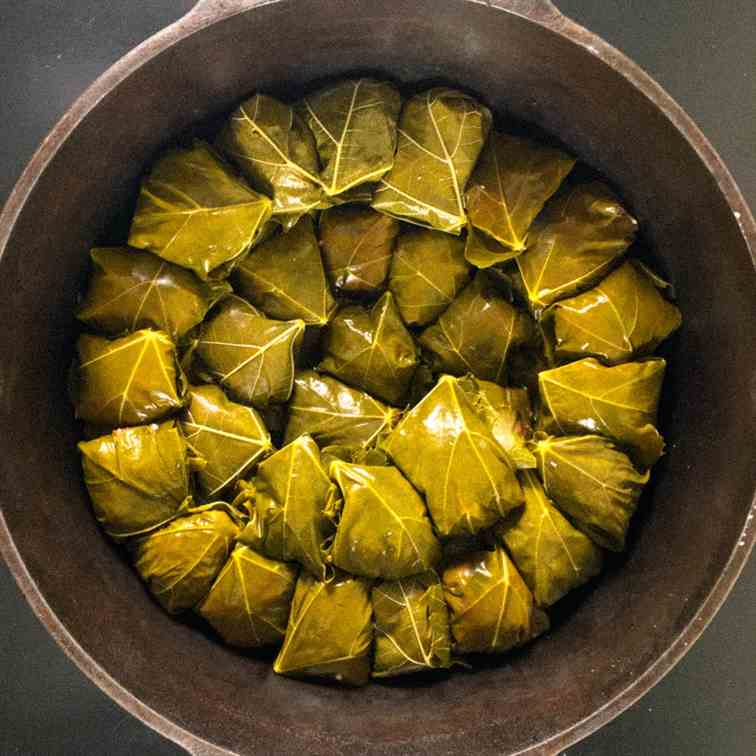 Grape Leaves with Rice and Meat