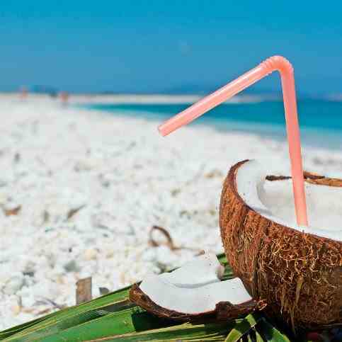 Coconut Rum- Spring and Summer Fresh Drink