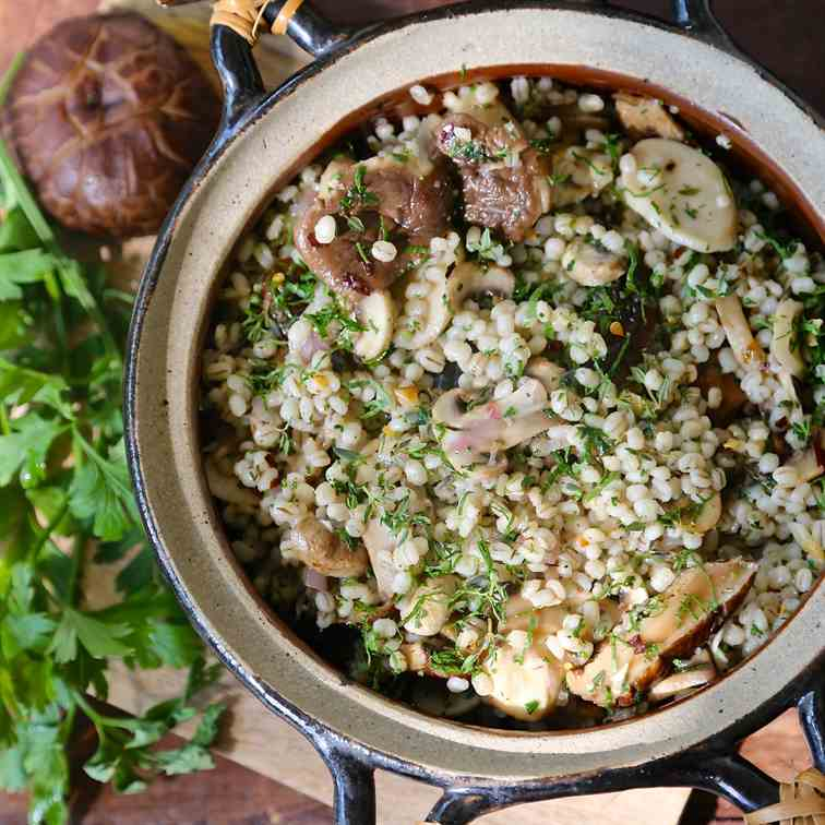 barley and three mushroom salad