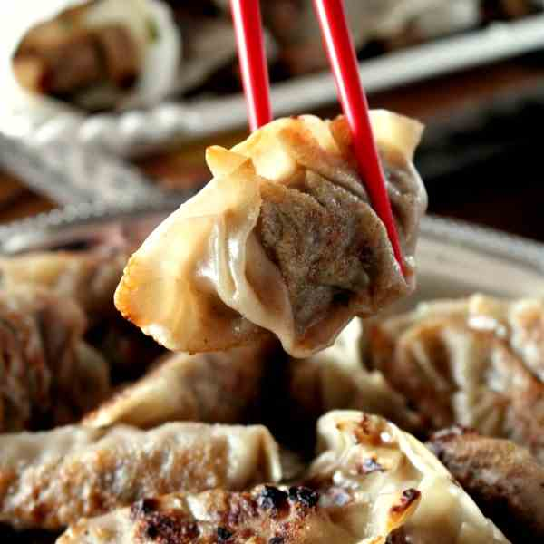 Pot Sticker - Chinese Dumplings