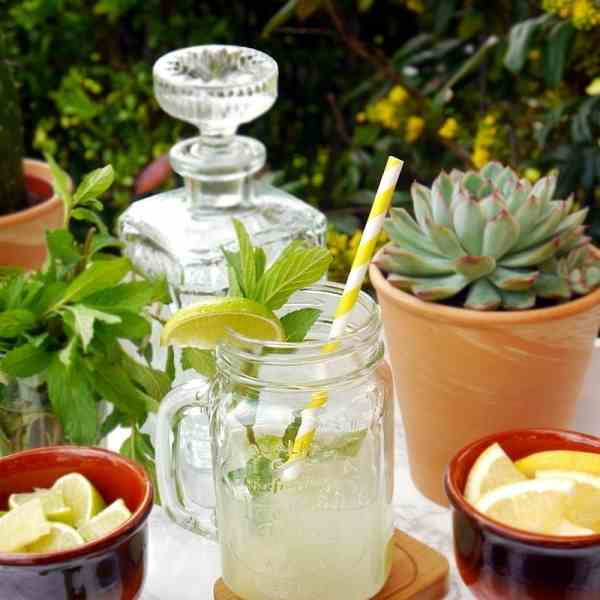 Fruity Mojito Recipe