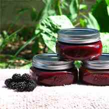 Easy-Peasy Blackberry Puree