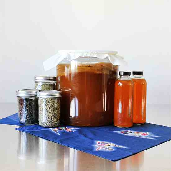 Kombucha – Fermented Tea