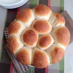 Honey Yeast Rolls with Sea Salt