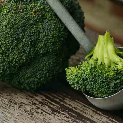 Broccoli A Disease Fighting Resource