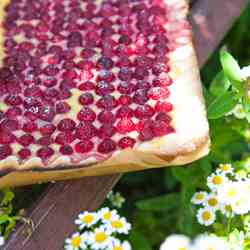 raspberry tart with vanilla creme